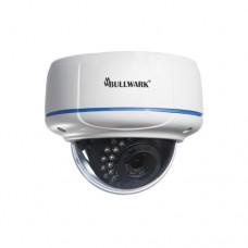 Bullwark / BLW-2201IP-DV